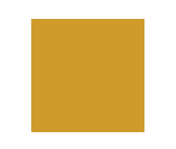 Icons Phone