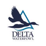 Partner Delta