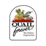 Partner Quail